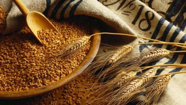 Сертификация зерна и продуктов их переработки